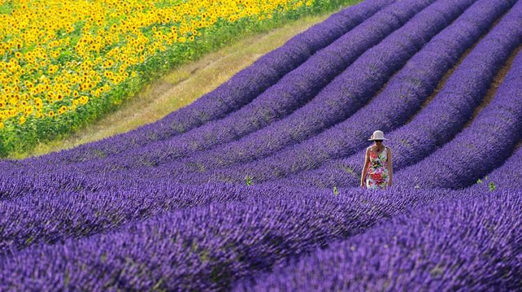 Provence Foto Workshop
