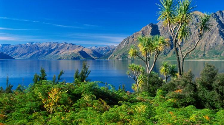 Neuseeland Foto Reise