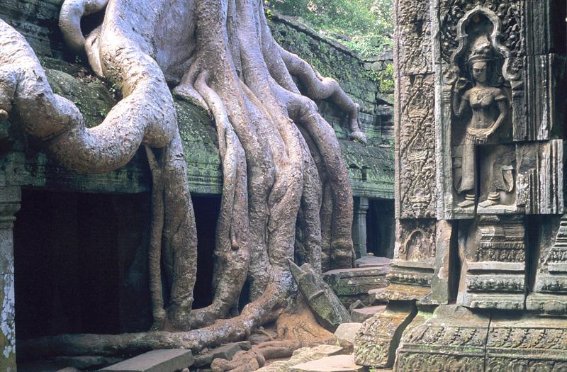 Kambodscha / Tempelstadt Angkor