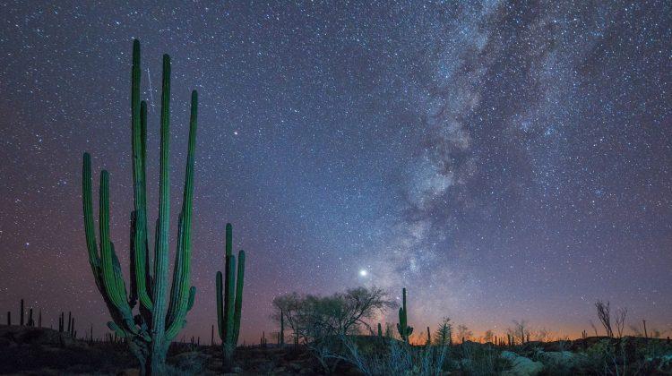 Privater Foto Kurs in Baja California