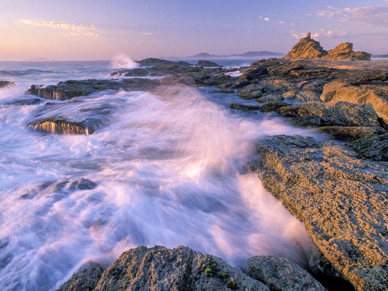 Naturparadies Tasmanien Foto Reise 2021