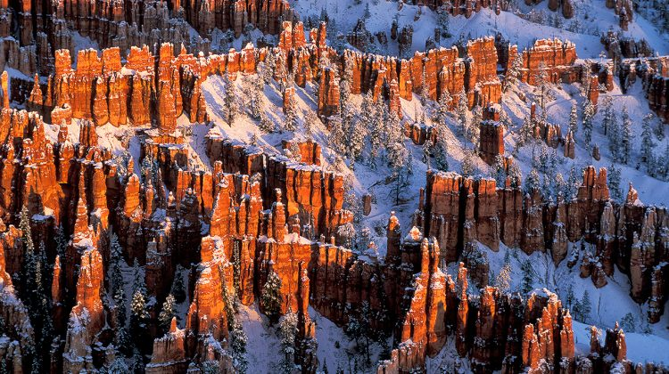 Winter in den Canyons Foto Reise 2020
