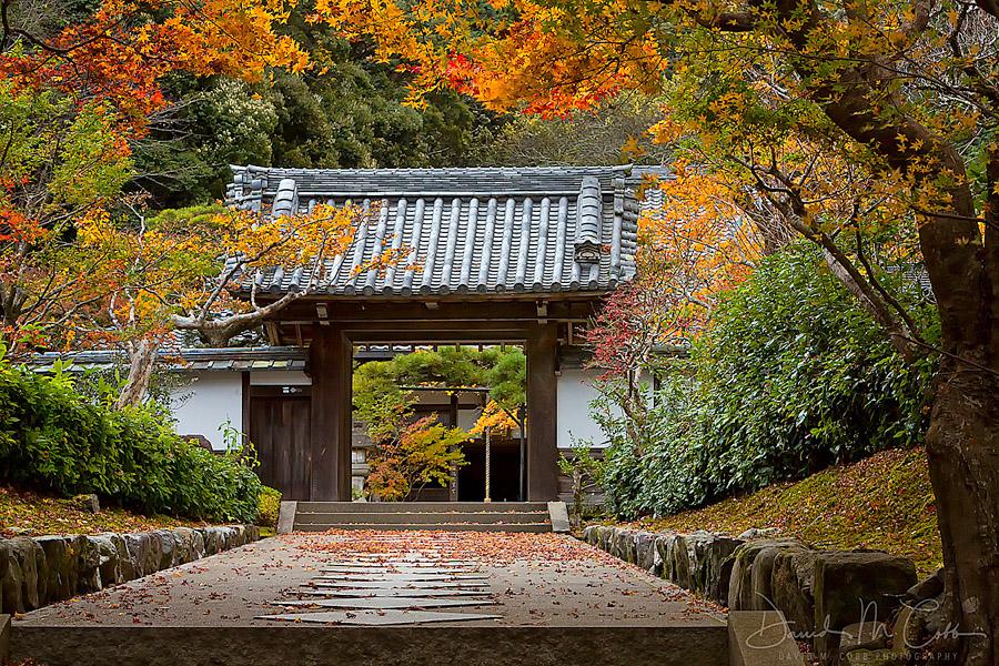 Magisches Japan im Herbst Foto Reise