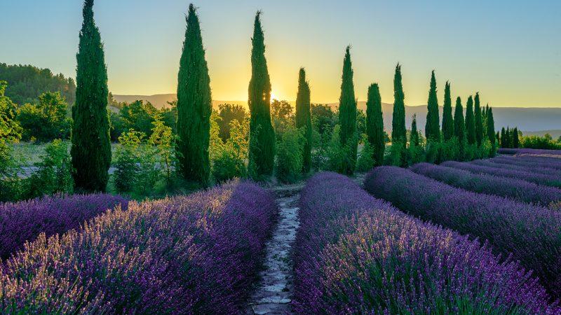 Foto Workshops Provence 2020